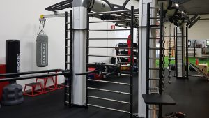 OR 16005 - Tiny Gym Ladder 240 demo